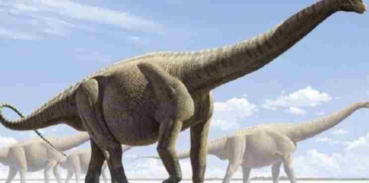 Επιστημονική ανακάλυψη: Οι πρώτοι δεινόσαυροι ρίχνουν… φως στην εξέλιξη των αυγών