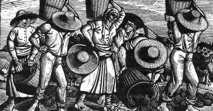 Ο ΠΟΛΥΒΙΟΣ ΔΗΜΗΤΡΑΚΟΠΟΥΛΟΣ ΓΡΑΦΕΙ  ΓΙΑ ΤΟ ΚΙΑΤΟ ΚΑΙ ΤΟ ΞΥΛΟΚΑΣΤΡΟ