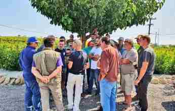 Σταματόπουλος : Να δοθούν άμεσα από τον ΕΛΓΑ οι αποζημιώσεις στους σταφιδοπαραγωγούς