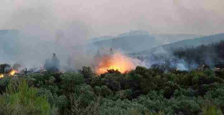 Υπό μερικό έλεγχο τέθηκε η δασική πυρκαγιά στην περιοχή της Νεμέας