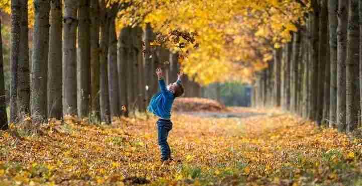Τα φύλλα του φθινοπώρου πέφτουν πιο νωρίς λόγω της κλιματικής αλλαγής