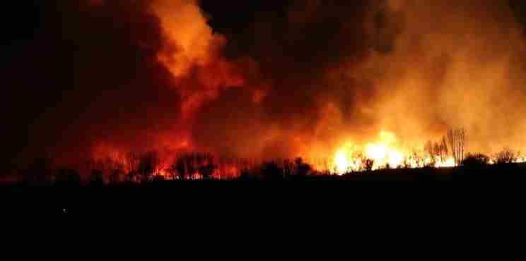 Πυρκαγιά στη λίμνη Στυμφαλία