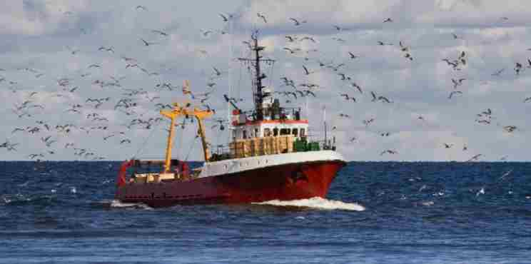 ΕΕ: 6,1 δισ. για τη βιώσιμη αλιεία και την προστασία των αλιευτικών κοινοτήτων