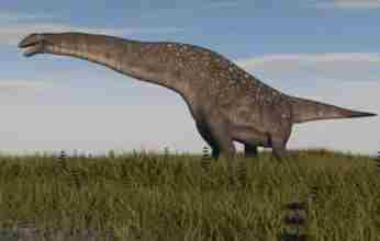 Ανακαλύφθηκε νέος γιγαντιαίος δεινόσαυρος, ίσως το μεγαλύτερο πλάσμα που έζησε στη Γη