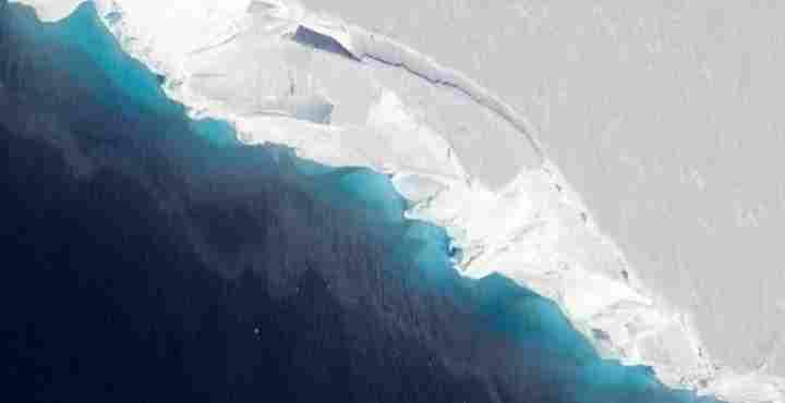Παράξενα πλάσματα ανακαλύφθηκαν τυχαία κάτω από τους θαλάσσιους πάγους της Ανταρκτικής